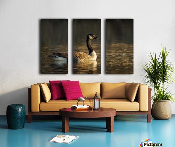 _T8C4044 Split Canvas print