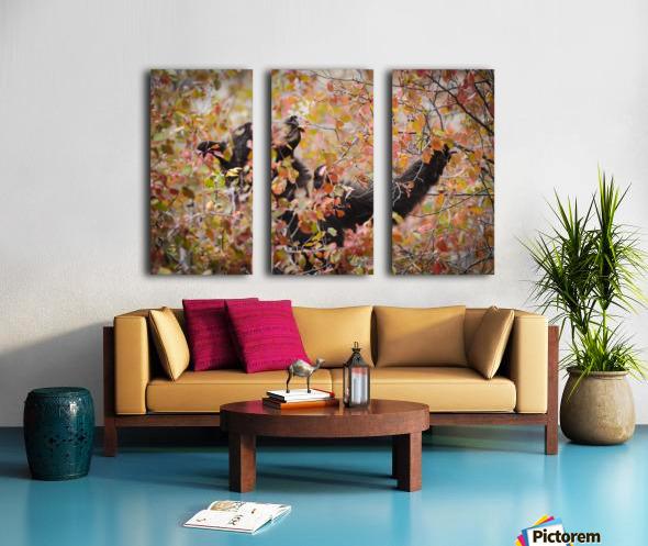 _T8C8285 Modifier 2 Split Canvas print