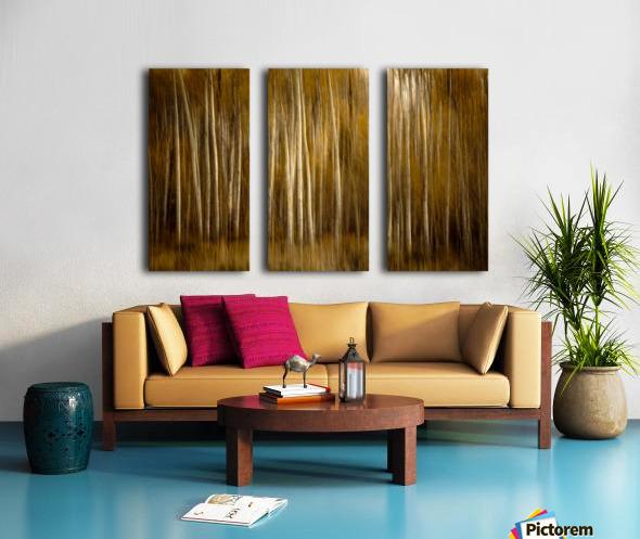 2S9A2743 Split Canvas print