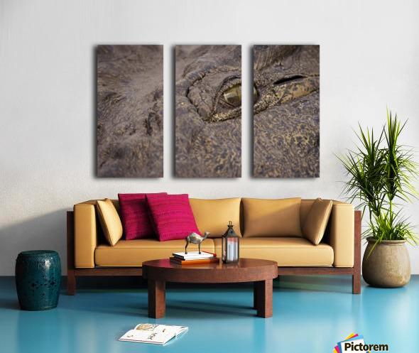 164A1267 Split Canvas print
