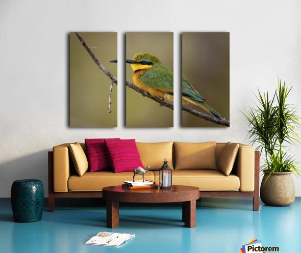164A1450 Modifier Split Canvas print