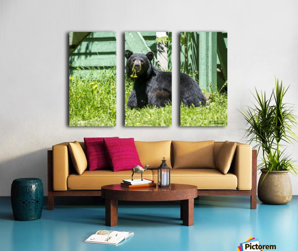1 5 Split Canvas print