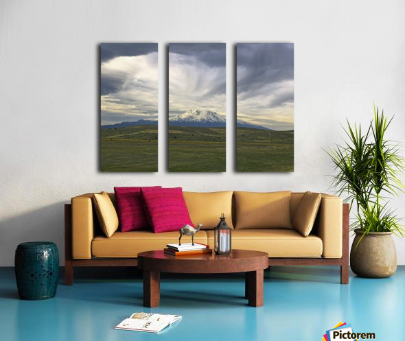 Shasta 1 Split Canvas print