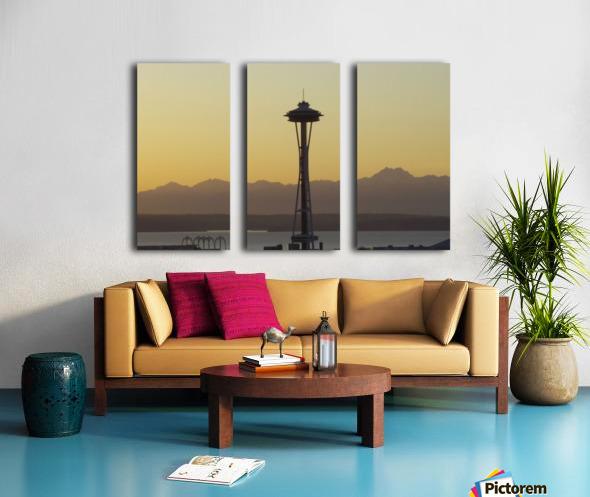 needle Split Canvas print