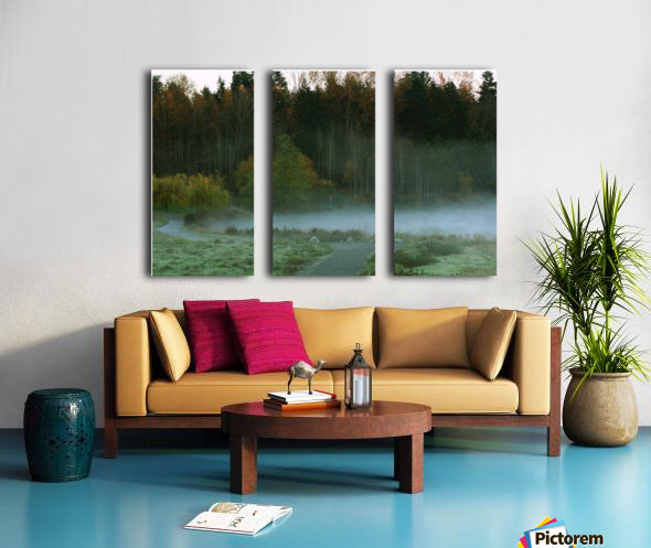 Weyerhaeuser morning Split Canvas print