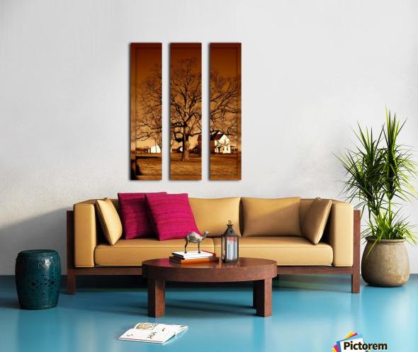Magnificent Tree Split Canvas print