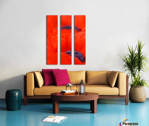 Poppy Heart I Split Canvas print