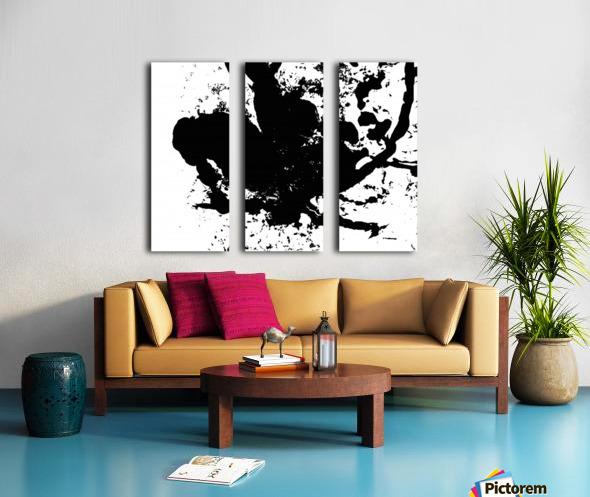 Surprise Black and White Split Canvas print