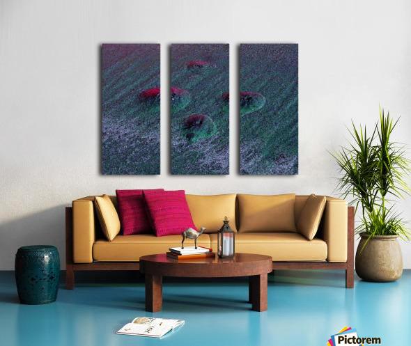 20180916_204111 Split Canvas print