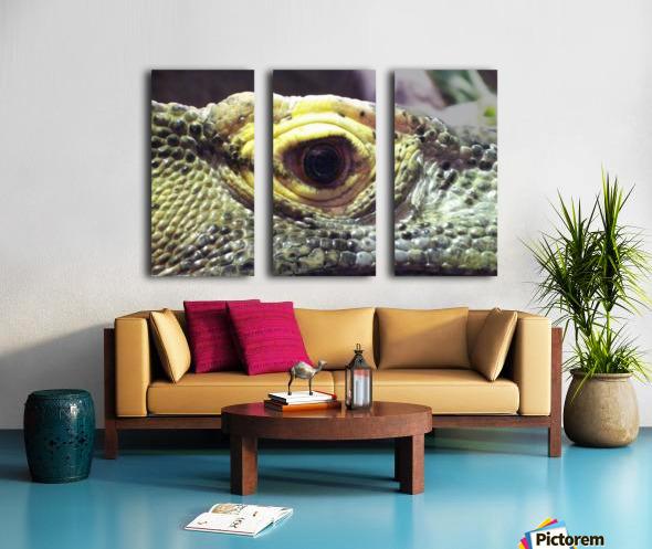 Scale Split Canvas print