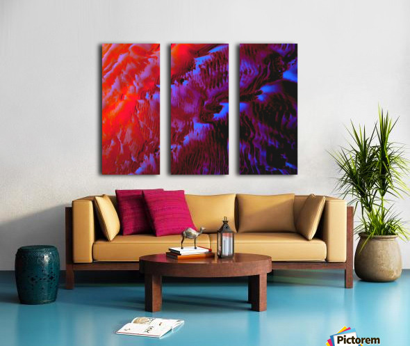 20180925_204803 Split Canvas print