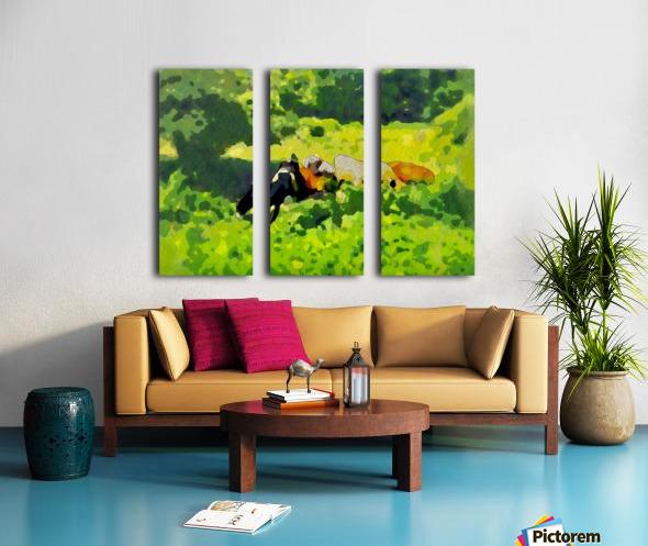 Cummington Cows Split Canvas print
