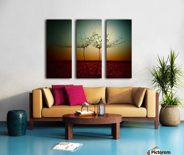 Fire and water Split Canvas print