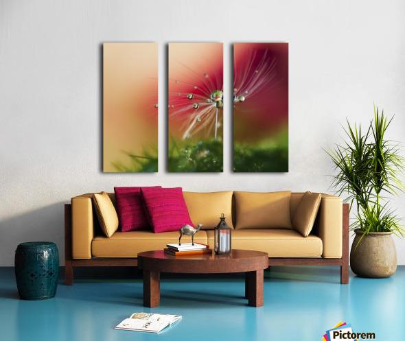 Red Morning Split Canvas print