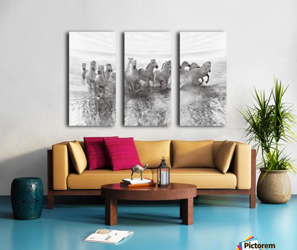 Illusion of power (13 horse power though) Split Canvas print