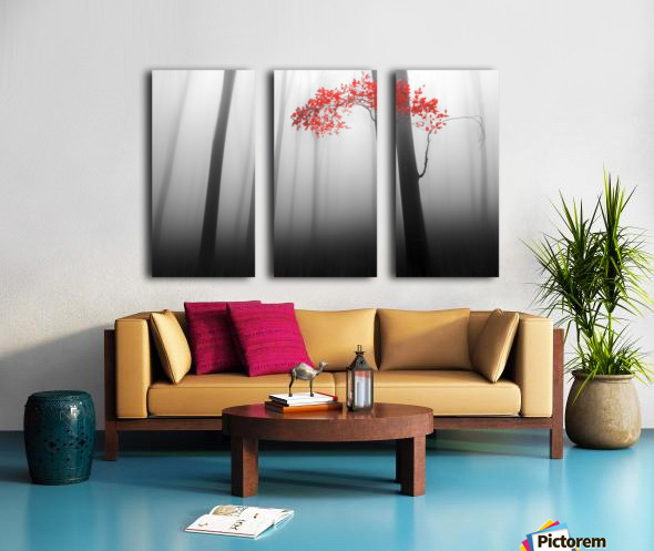 illusion Split Canvas print