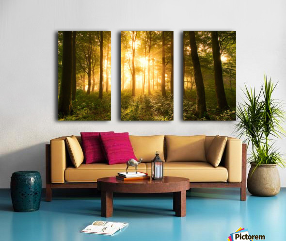 Light in the Forest. Split Canvas print