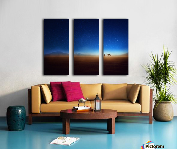 Go home Split Canvas print