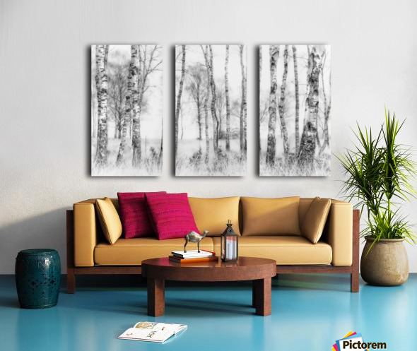 Black and white Split Canvas print