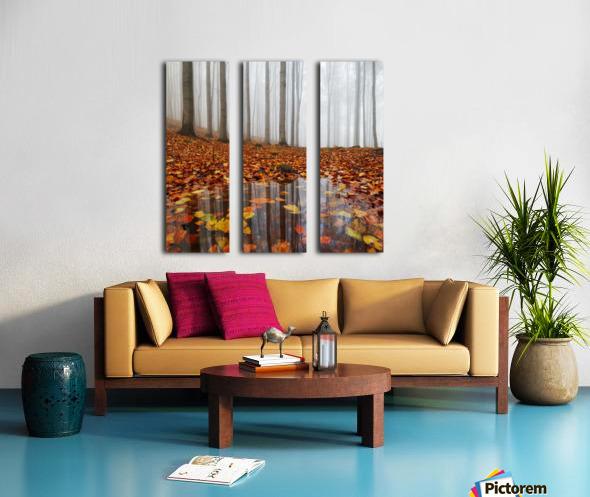Puddle Split Canvas print