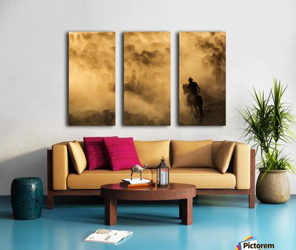 Cappadocia wild horses Split Canvas print