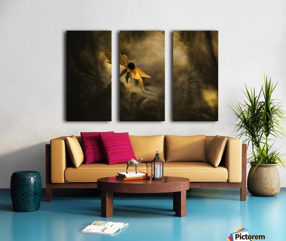 Solaris Split Canvas print