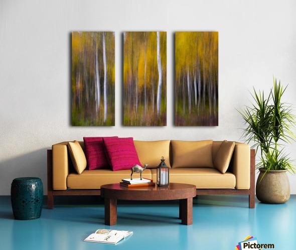 Abstract Fall Split Canvas print