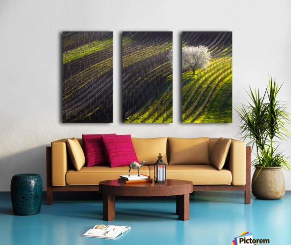Strings of spring Split Canvas print