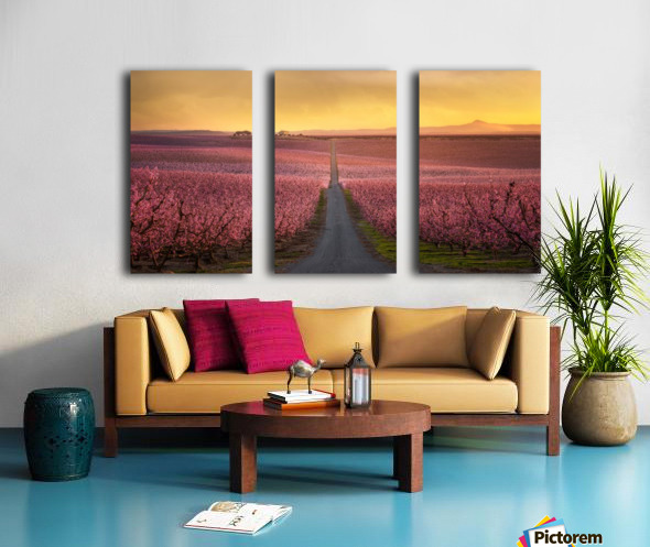 Flowering Split Canvas print