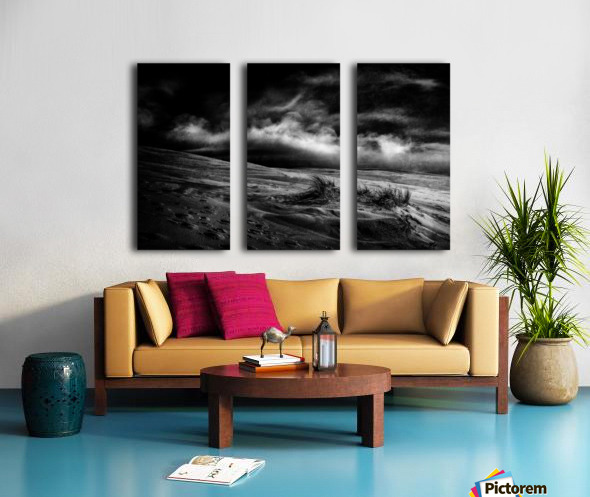 marram grass Split Canvas print