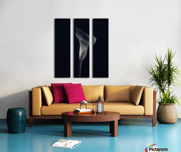 Calla lily Split Canvas print