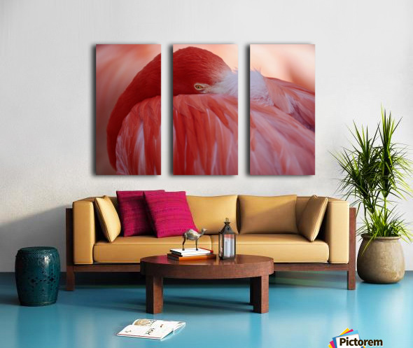 RED Split Canvas print
