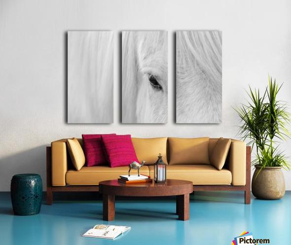 Whisper of Iceland Split Canvas print