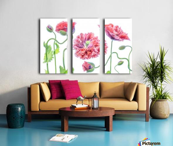 Fancy Split Canvas print