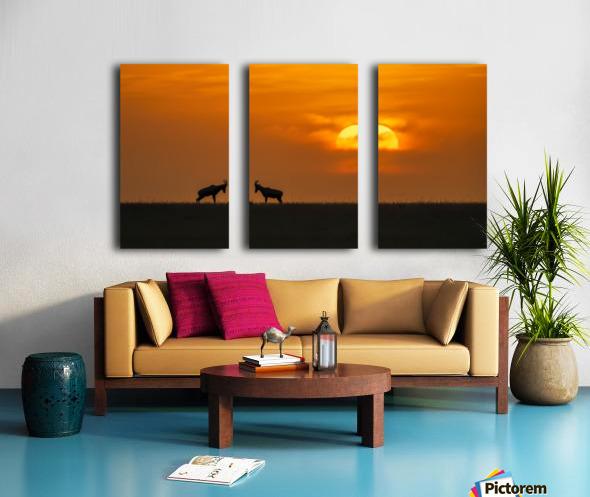 At The Sunset Split Canvas print