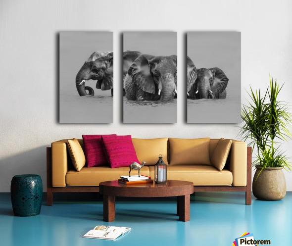 Elephant Crossing The River Split Canvas print