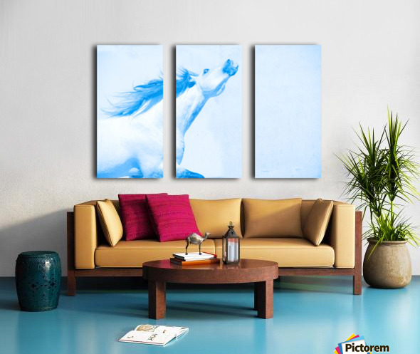 Blue Andalusian Horse 4 Split Canvas print