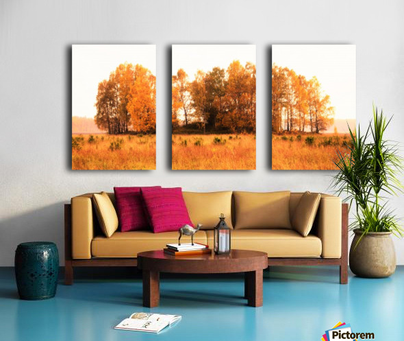 trees of fall Split Canvas print