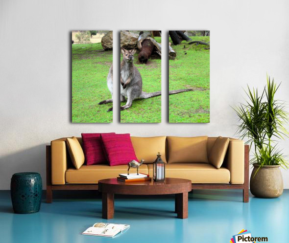 Animal16 Split Canvas print