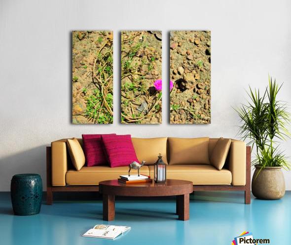 Flower16 Split Canvas print