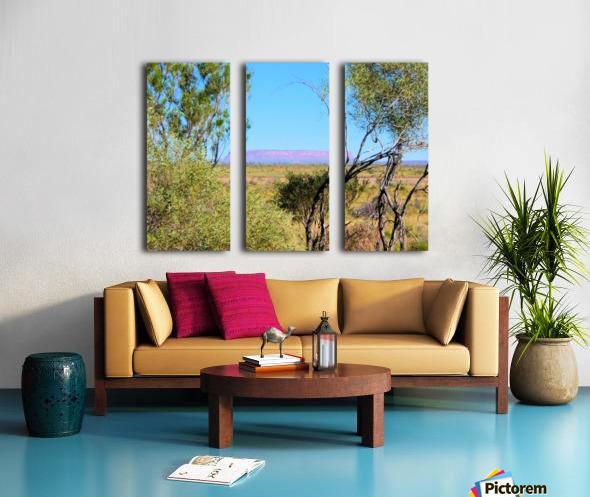Outback6 Split Canvas print