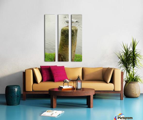 Mouette Split Canvas print
