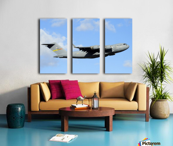 A C-17 Globemaster III Split Canvas print