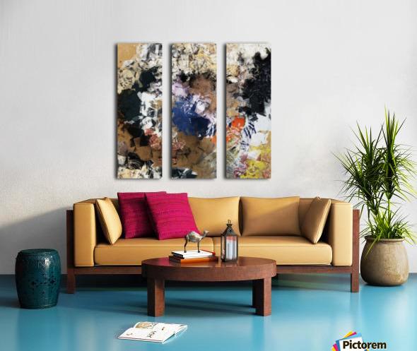Homeland Split Canvas print