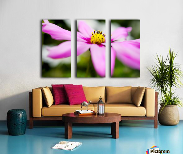 Pink and Flowing Split Canvas print