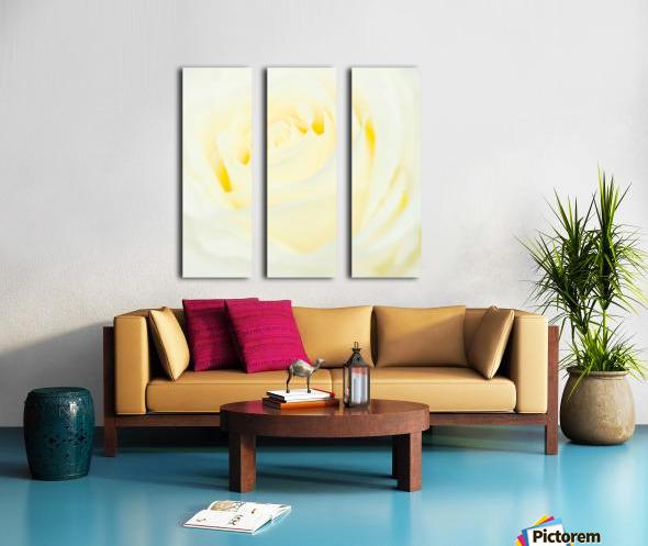 The White Rose Split Canvas print