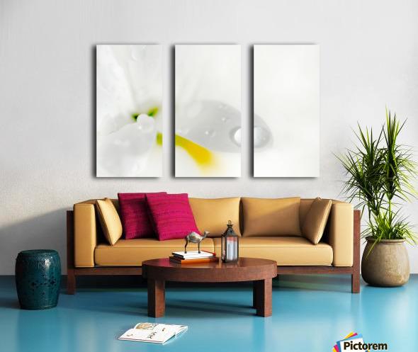 One Droplet Split Canvas print