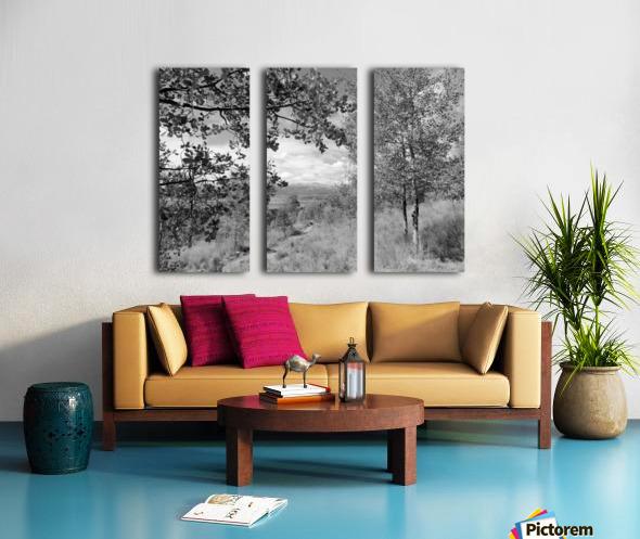 DSC01173 Split Canvas print