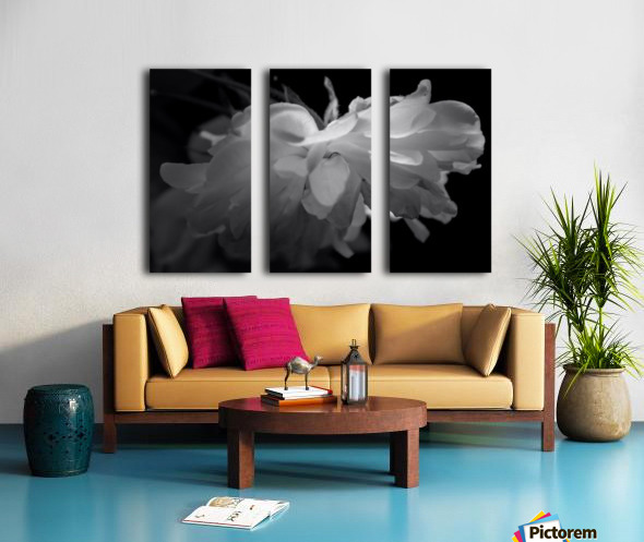 Tender Split Canvas print
