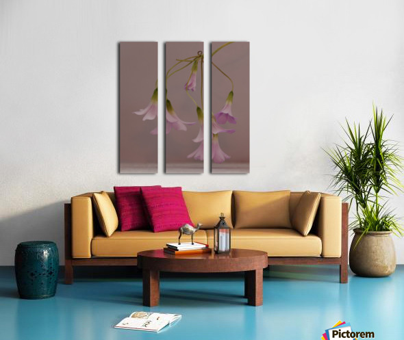 Pretty in pink Toile Multi-Panneaux